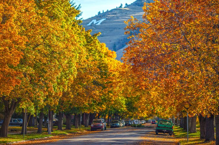 17 Best Images About Missoula On Pinterest U Of M