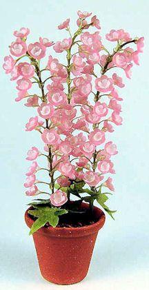 Miniature flowers