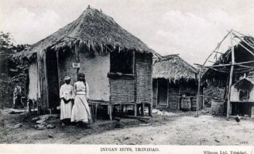 19th C Indian Huts In Trinidad Indian Indentured