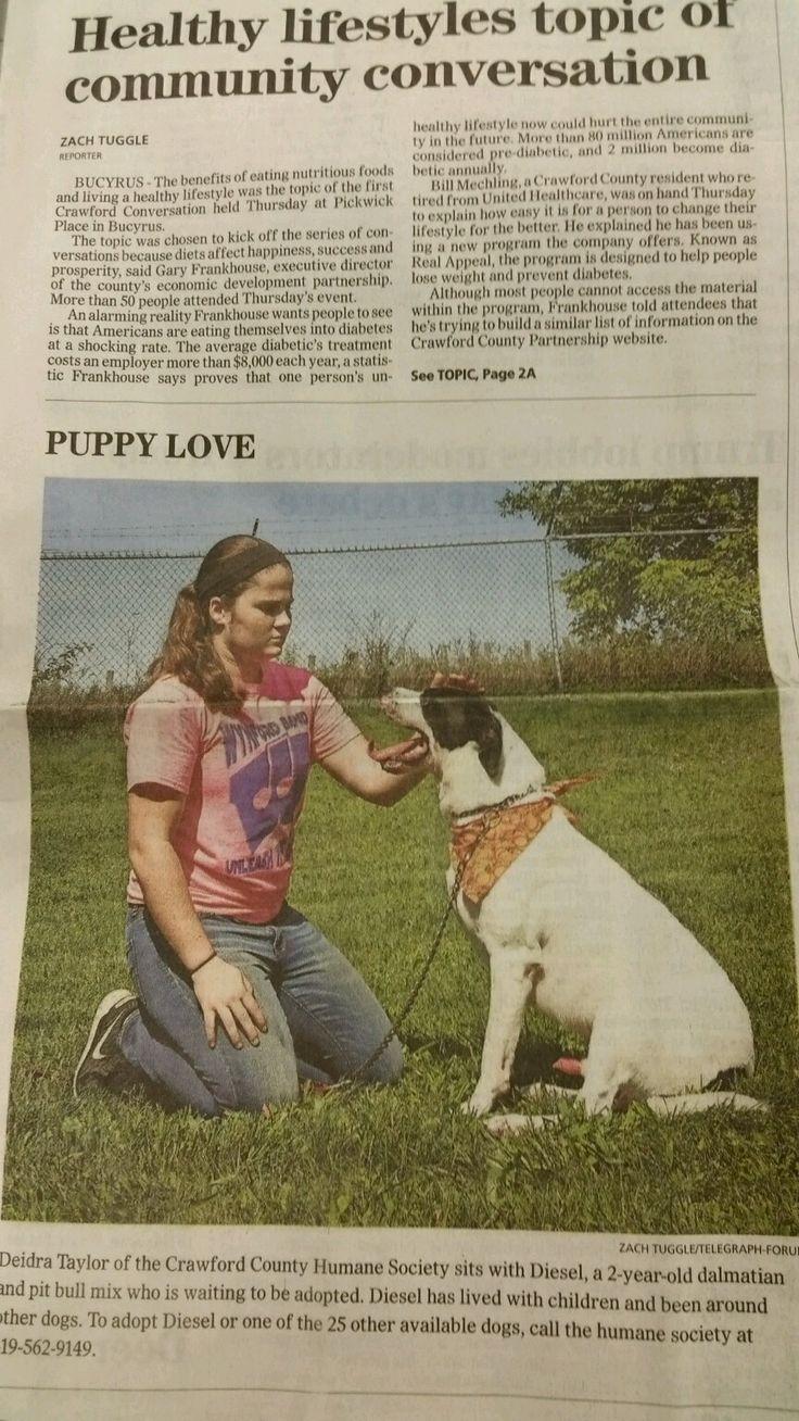 Dog in my local news paper seems pretty happy
