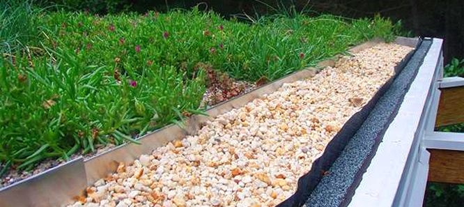 Hey Washington, DC!: Request a green roof consultation from dc greenworks today! http://dcgreenworks.org/contact-us/