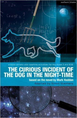 Read the review of the play in The New York Times: http://www.nytimes.com/2014/10/06/theater/the-curious-incident-of-the-dog-in-the-night-time-opens-on-broadway.html.    Personally, I saw it on Broadway last winter... the best play I've ever seen in my life - from start to finish.  Brilliance!