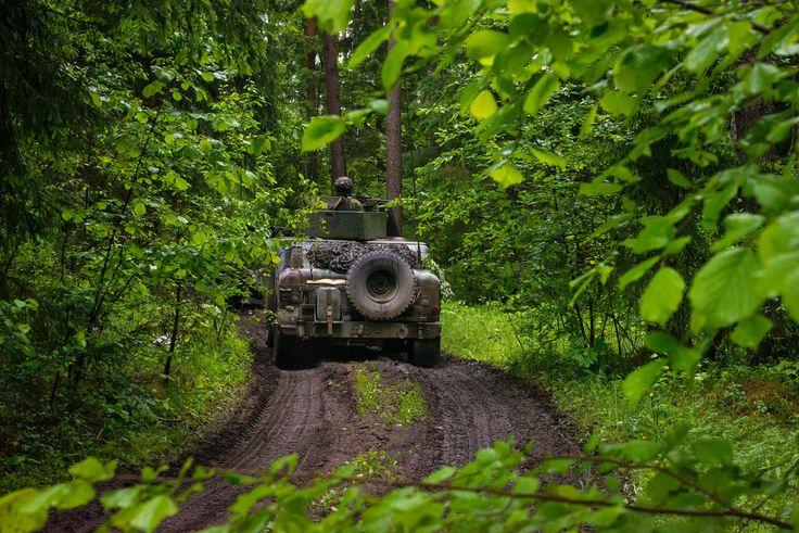 No 9. līdz 14. jūnijam militāro mācību norise intensīvi notiek arī ārpus poligona - Amatas, Mālpils, Ogres, Ropažu, Salaspils un Stopiņu novados, kur bataljona līmeņa vienības, pārvietojas ar bruņutehniku, veic mācību uzdevumus ar zemju īpašniekiem saskaņotās teritorijās.  13. jūnijā mācības norisinājās Allažmuižas apkārtnē.  Foto: Līga Neimane (Jaunsardzes un informācijas centrs)