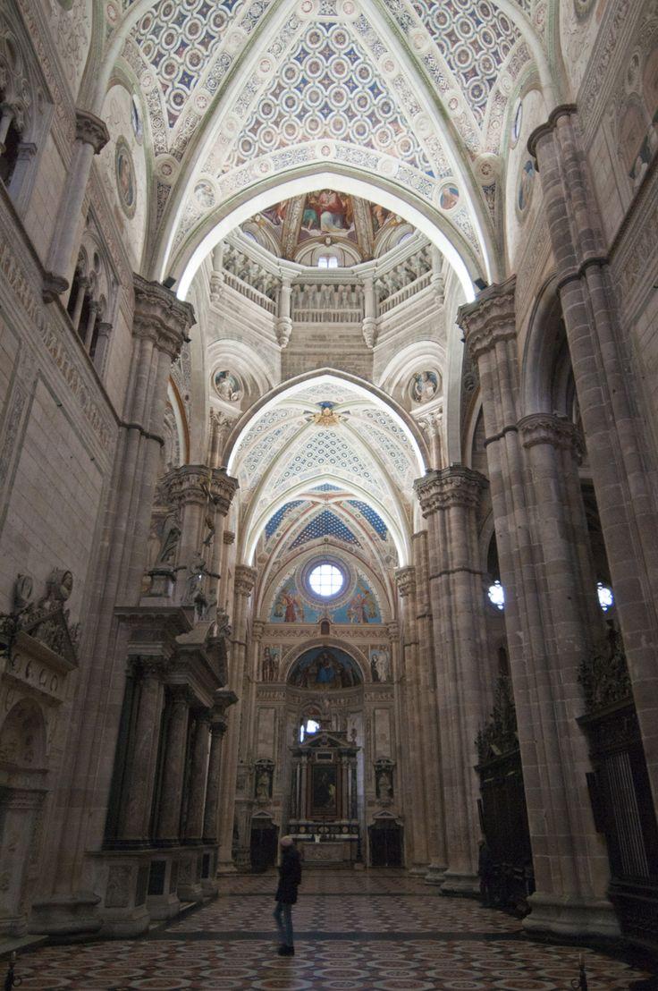 10 motivi per visitare la Certosa di Pavia
