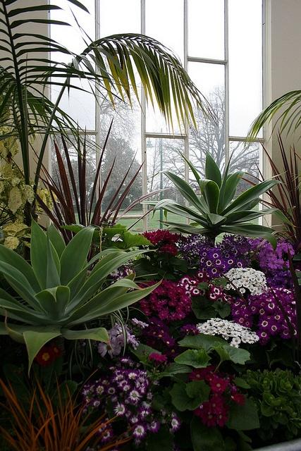 Launceston Horticultural Society Pavillion