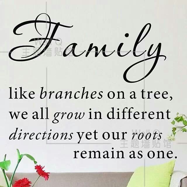 Inspirational Quotes About Family Love: 22 Best Best Tree Quotes Images On Pinterest