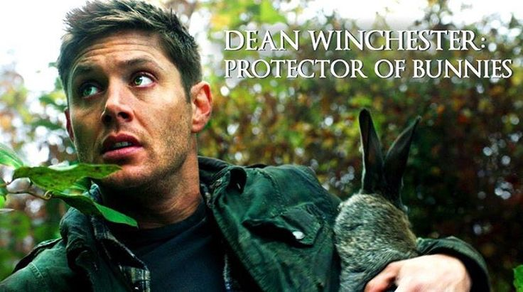 """Episode synopsis: THURSDAY, FEBRUARY 9 #SUPERNATURAL """"Regarding Dean""""--- (8:00-9:00 pm ET) (TV14, DLV) (HDTV) DEAN LOSES HIS MEMORY - Sam (Jared Padalecki) enlists Rowena's (guest start Ruth Connell to help track down an old world, powerful family of witches after Dean (Jensen Ackles) gets hit by a spell that is rapidly erasing his memory. John Badham directed the episode written by Meredith Glynn (#1211) Original air date 2/9/17 Pic credit: Mary Manchin   @Nnja11 (Twitter)"""
