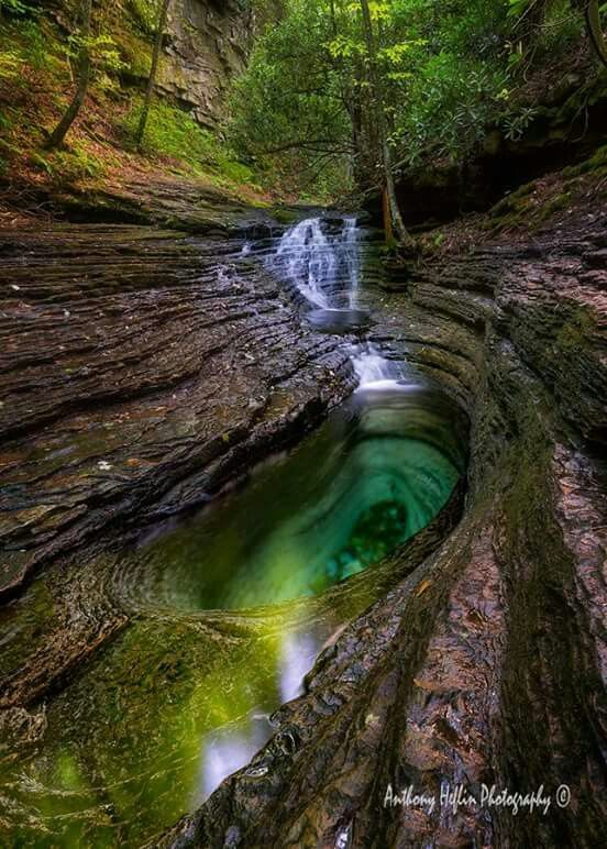Devils bathtub southwest Virginia. I want to go here next summer.