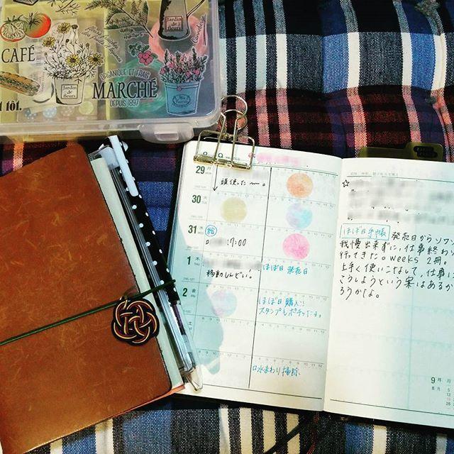 * #能率手帳 #トラベラーズノート#トラベラーズノートパスポートサイズ #手帳#ダイソピルトン #文房具 * 能率手帳、今週のページ。  ダイソピルトンも作ってみた( ´∀`) (ケースはセリアだけど) 手帳と一緒に使おうかな、と。