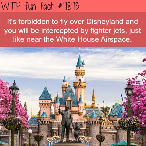 Disneyland Facts - WTF fun facts