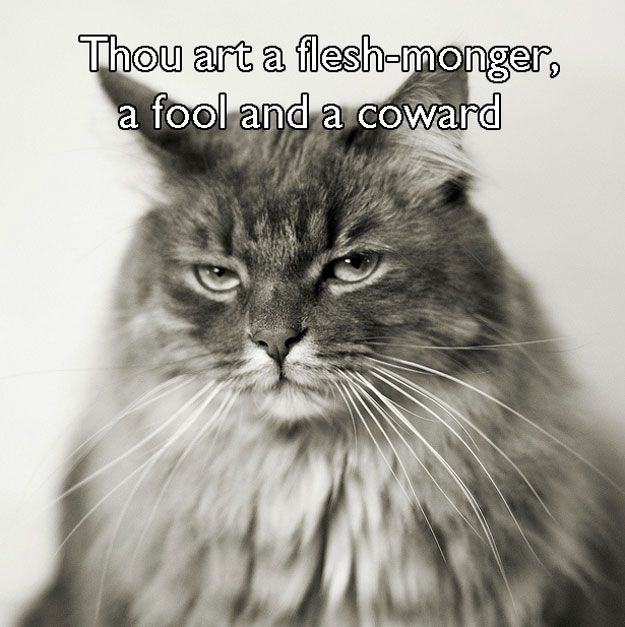 17 Shakespearean Insults To Unleash In Everyday Life. Why they are on pictures of cats I don't know.