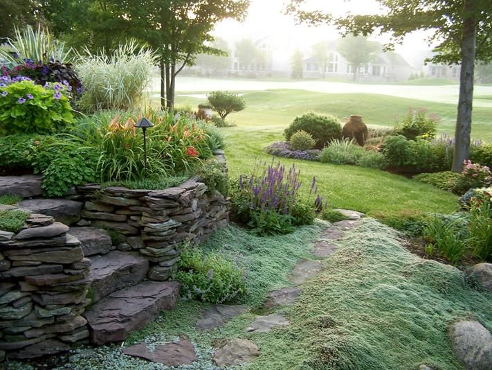 Rock stairs and mossy walkway