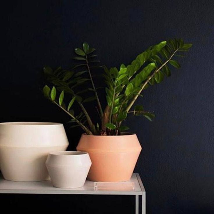 Our Rimm flowerpots come in four sizes and are available in white, cool grey and camel, creating a striking contrast with the dark blue wall of the by Lassen Concept Store.⠀⠀⠀ Thanks to @lateliersora for the image