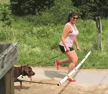 21 Best GIFs Of All Time Of The Week #107 from best GOAT and Best of the Web