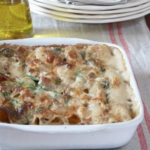 Cannelloni with a butternut filling