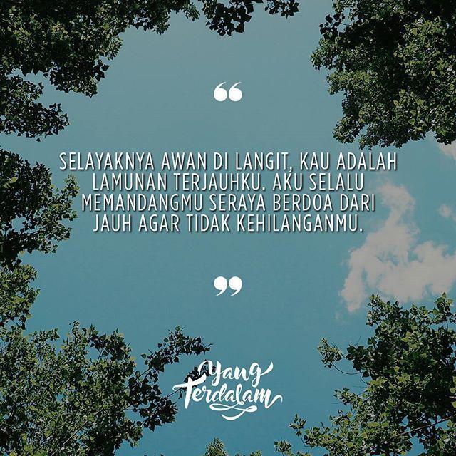 Dan berharap angin tidak menghempaskanmu lebih jauh lagi.  Kiriman dari @damiannagata  #berbagirasa  #yangterdalam  #quote  #poetry  #poet  #poem  #puisi  #sajak
