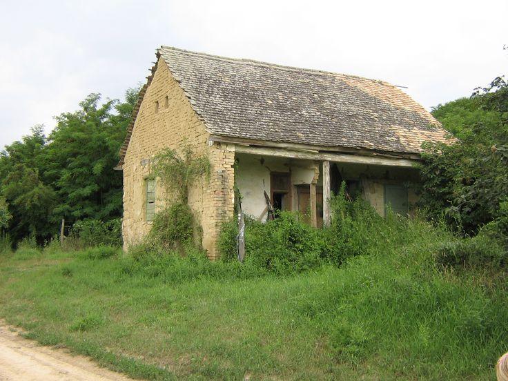 Abandoned house near the forest (Kis Kövesd)
