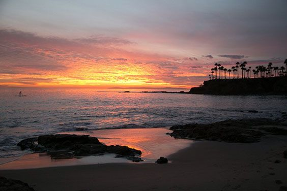 Shaw's and Divers Cove in Laguna Beach