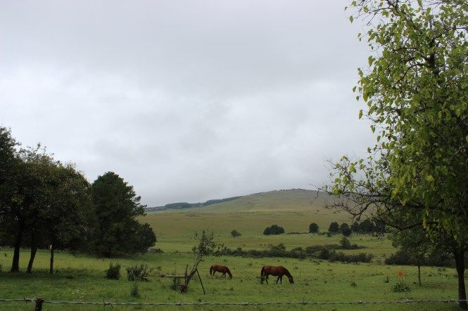 Things to do in Dullstroom | The Leather Marshmallow