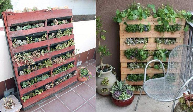 Atık Paletlerle Yapılmış Dikey Bahçeler --> http://www.cevrecibahcem.com/1212