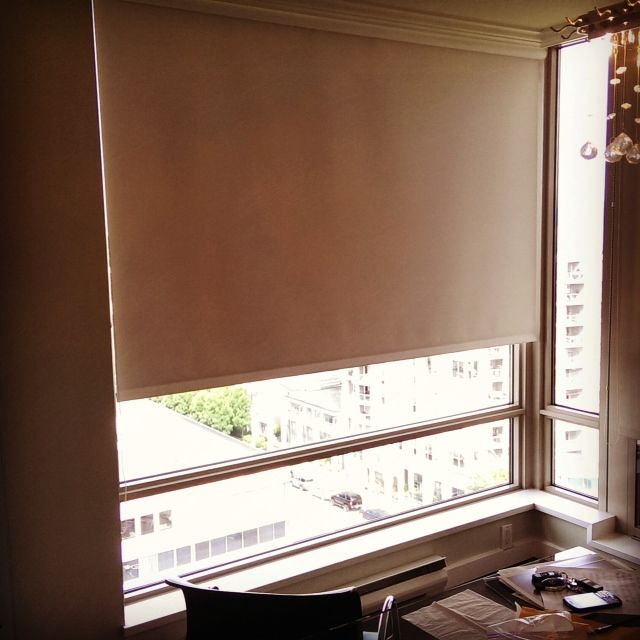 Double Honeycomb Blinds Images Shades For Living Room