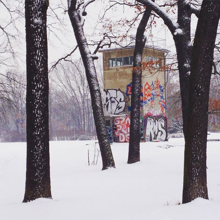 #winter #berlin #snow #alttreptow #trees #graffiti