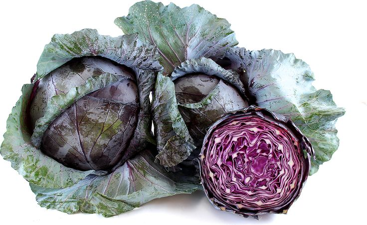 Red cabbage is distinguished by its coloring, texture and flavor. Like Green cabbage it is rounded and wrapped in tightly wound waxy leaves. The leaves are more violet and burgundian versus true red. Their flavor is far more bold, cruciferous and peppery versus Green cabbage, which is also due to the anthocyanin pigments. Red cabbage lacks water weight, which makes its leaves chewier and coarser than Chinese cabbage varieties.