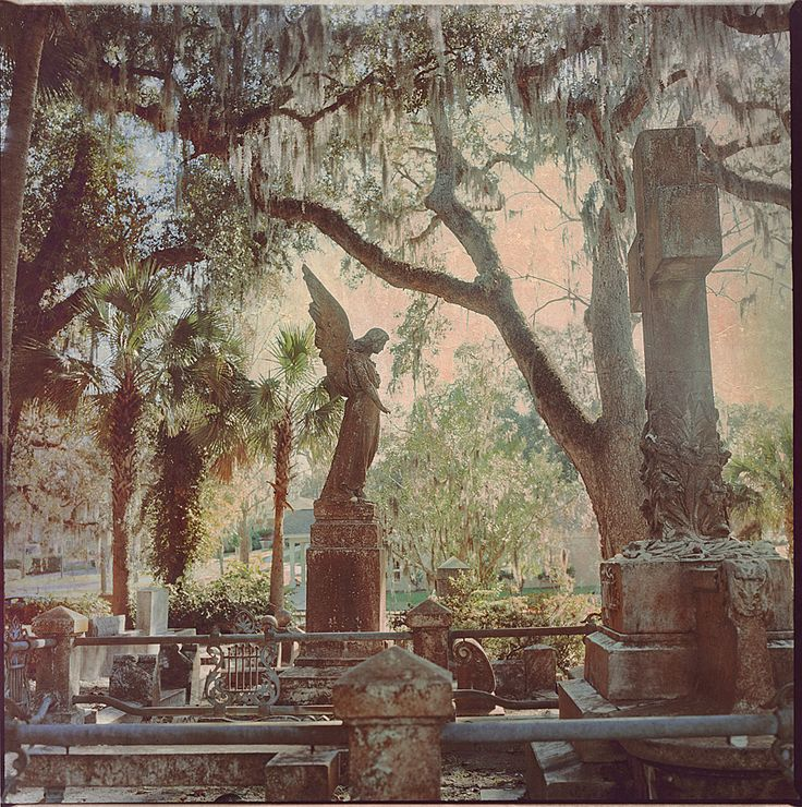 ~Huguenot Cemetary..the dates on these tombstones and monuments are amazing..what history ..~