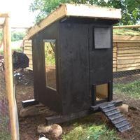 Byg en hønsegård - dr.dk/Tips fra DR