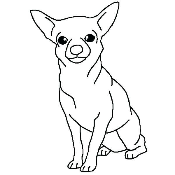 Chihuahua Puppy Coloring Pages Template Dog Coloring Page