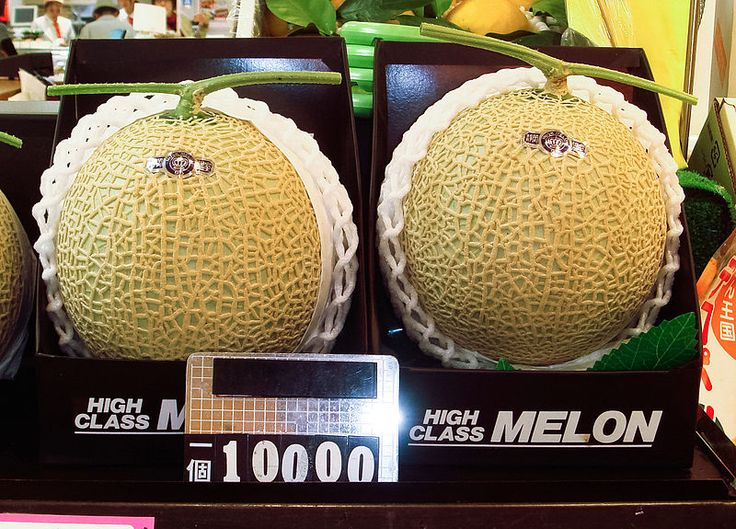 USD 25,000 Price Tag For A Pair Of King Yubari Cantaloupe Melons in Japan.