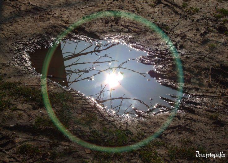Pocsolyatükör, fénnyel-fával01