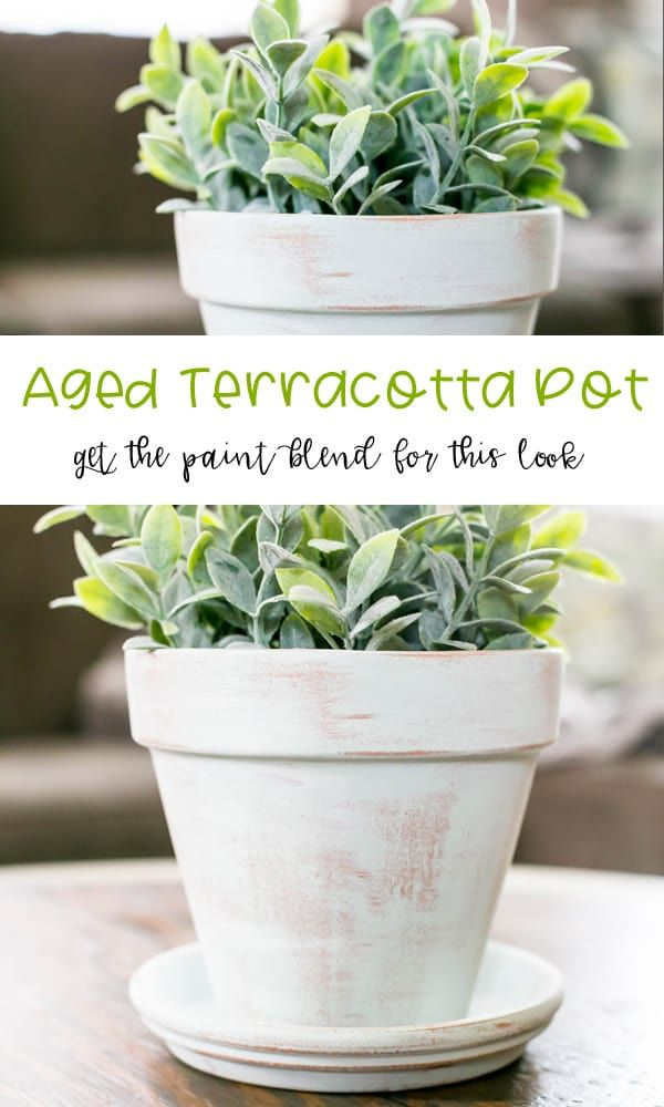 Diy Aged Terracotta Pot With Paint Terracotta Pots White Vinegar Cleaning Vinegar Cleaning Recipe