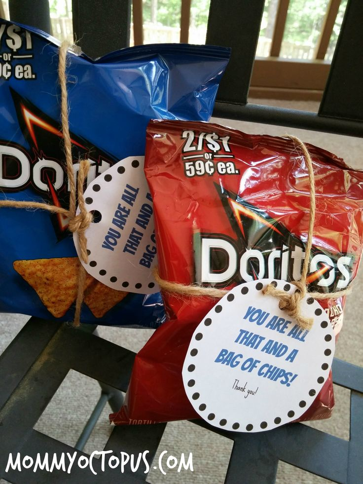 Law Enforcement Appreciation Day All That and a Bag of Chips Pun Gift