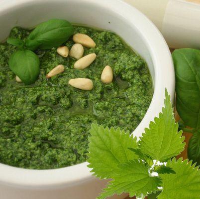 Auch Brennessel Pesto hat wie fast alle Produkte die gleiche heilende Wirkung und stärkt durch seine Vitamine und entschlackt durch Kalium und Co. den Körper.