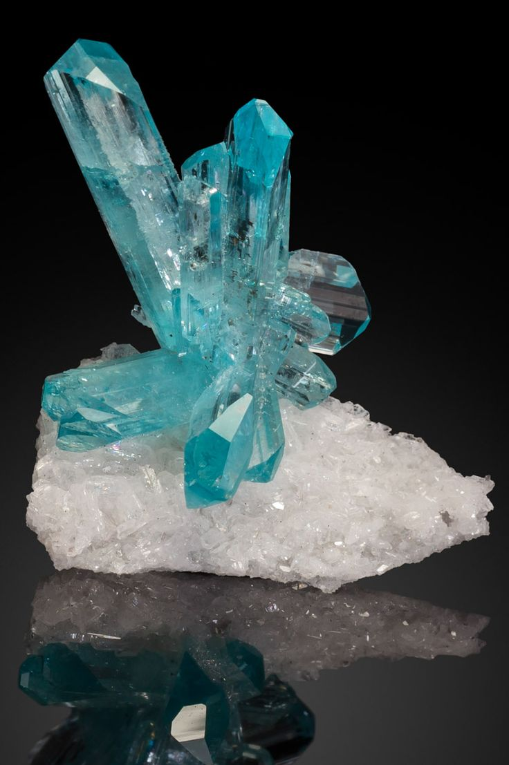 Euclase Crystals. La Marina Mine, Pauna, Boyaca, Columbia; Fine robin's egg blue Euclase crystals are rare and highly prized among collectors. The most valued crystals of Euclase are clear blue with great luster.  The most desired color is rich robin's egg blue. It's unusual to find even one undamaged blue Euclase gem crystal. This and more rare mineral specimens for sale on CuratorsEye.com