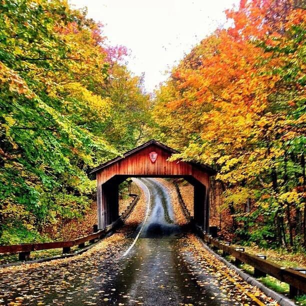 There's nothing like a Sunday drive on a country road in the fall!!
