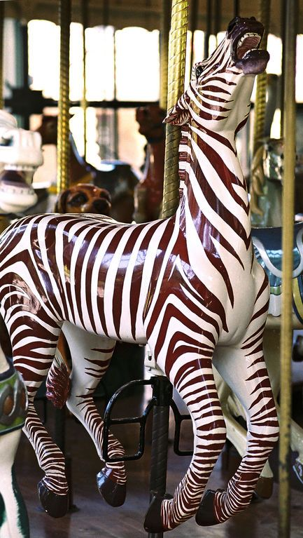 This zebra seems to be one of the few animals not decked out in saddle, bridle, and other decorations on the Golden Gate Park Carousel.  Makes him look more wild.