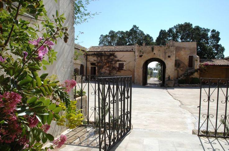 Situata vicinissima a Noto, nella Sicilia Sud-orientale, dove cresce il famoso vitigno del Nero d'Avola. Una splendida zona tutelata dall'Unesco piena di cultura, storia e fascino dove i Mazzei coltivano su 21 ettari di terreno, oltra al Nero d'Avola, anche Syrah, Cabernet Sauvignon e Petit Verdot.