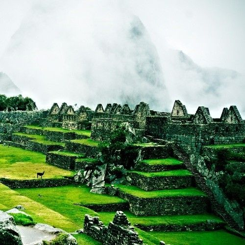 Machu Pichu, Peru. Because who wouldn't want to visit a lost city at the top of a mountain?
