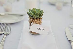 Si quieres regalar a tus invitados un detalle diferente, ¡apuesta por las suculentas! Están tan de moda.