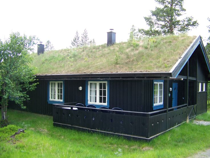 Green_Roof_in_Norway.png (798×600)