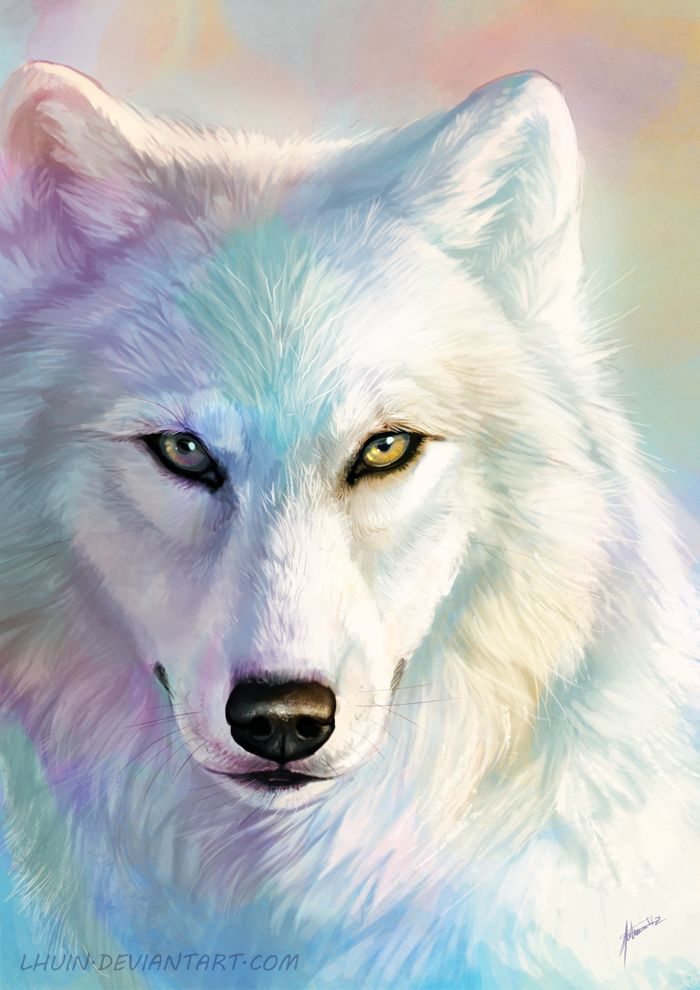 Wolf Pearlescent by Lhuin.deviantart.com A beautiful example of how an image based on a white subject doesn't have to be monochrome.
