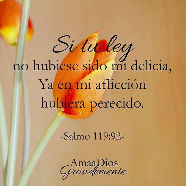 Salmo 119:92 #AmaaDiosGrandemente #Salmo119 #Salmos #ConfianzaenDios #TuPalabra #PalabradeVida #SeguidoresdeCristo