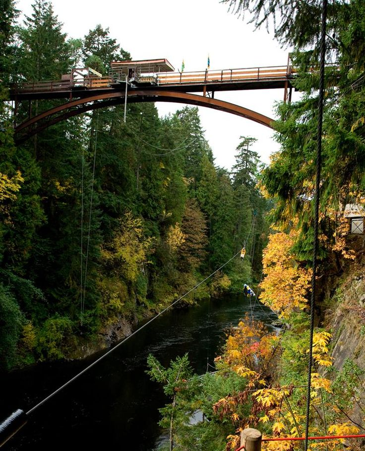 WildPlay Nanaimo this fall and the Monkido Classic Course including the Bungee Jump over the Nanaimo River