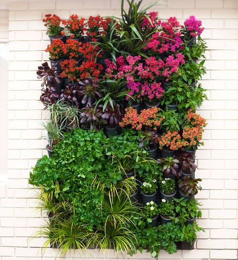 How to make a vertical garden: Vertical gardens are a clever way to make the most of your space and are great for adding a splash of colour to dull, bare walls.