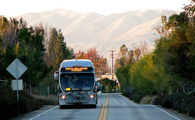 los angeles: metro orange line, bus rapid transit