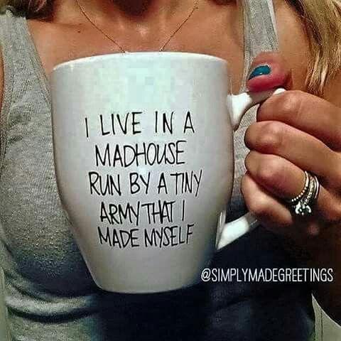 Mug sharpie brilliant my house quotes
