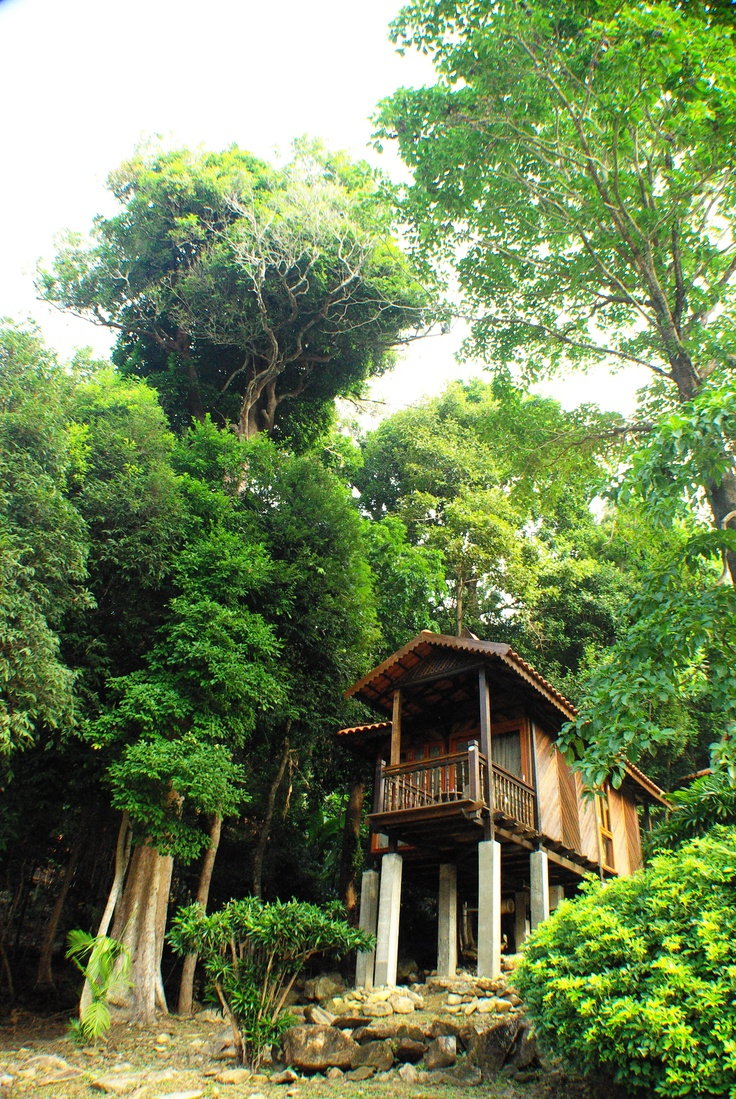 Chalet in the forest, close to nature, at Berjaya Langkawi Resort, Malaysia.