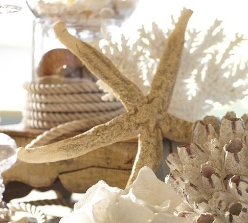 Pottery Barn Faux Extra-Large Starfish